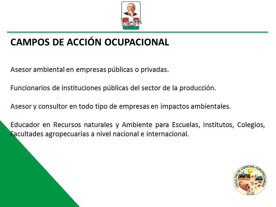 CAMPOS_ACCION_OCUPACIONAL_RRNN