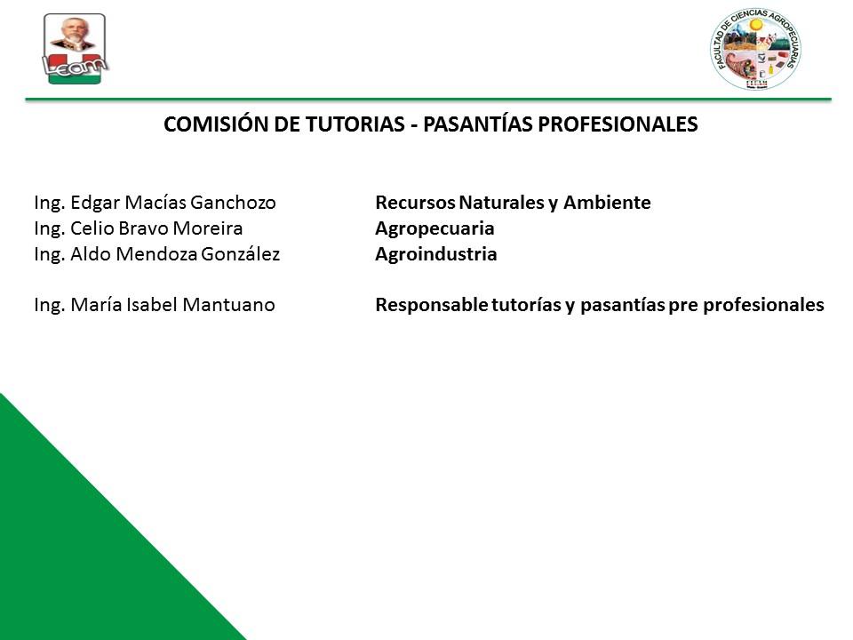 comision practicas pre profesionales y tutorias