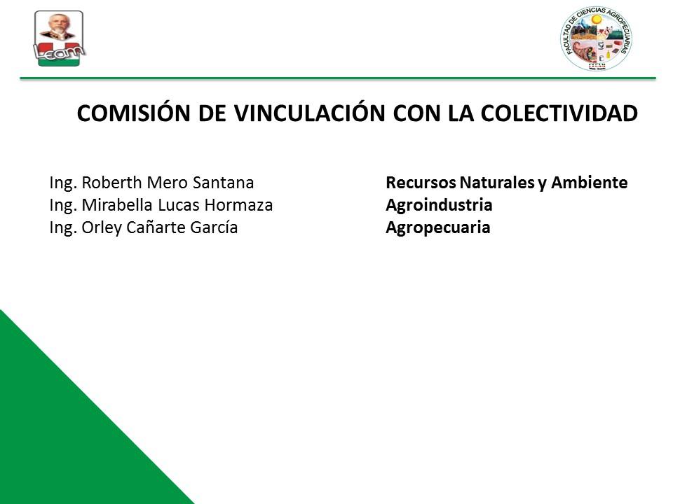 comision vinculacion colectividad