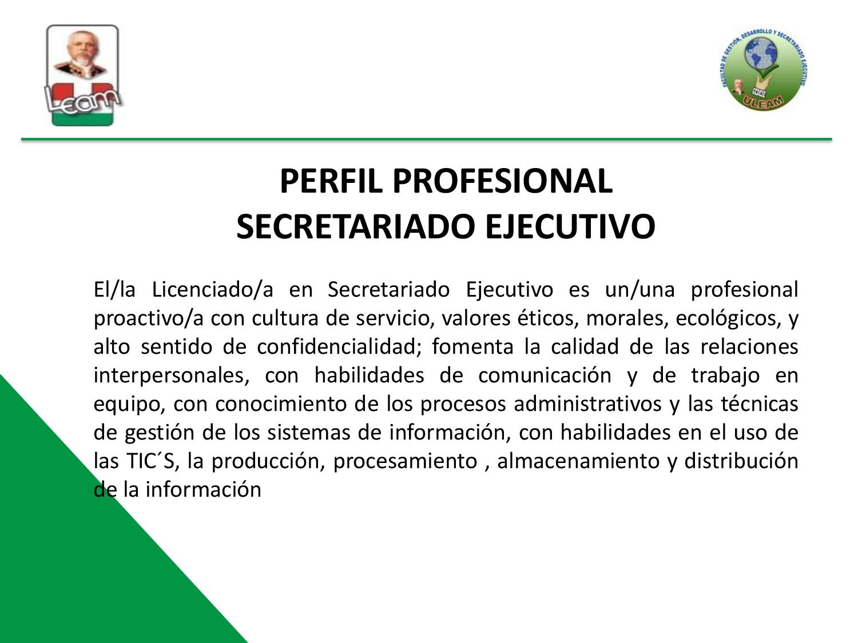 PERFIL_PROFESIONAL_SE